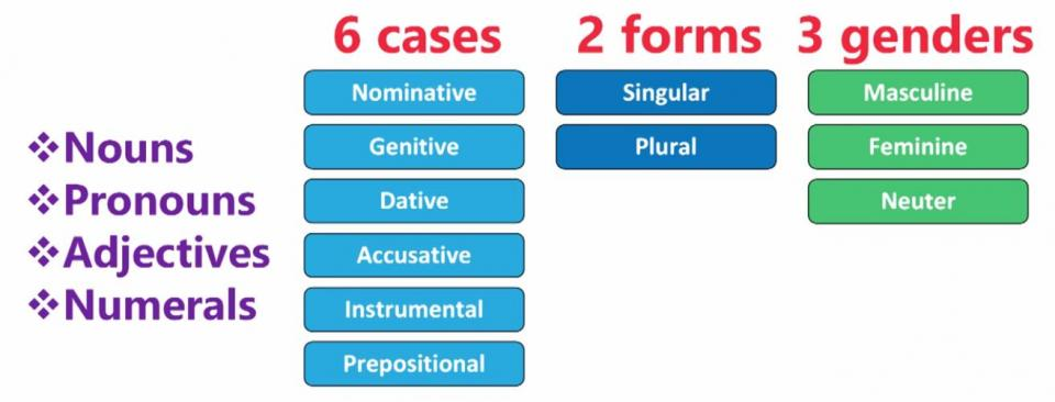 Chart. 6 cases. 2 forms. 3 genders.